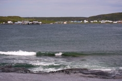 Raleigh Town Ha Ha Bay Burnt Cape Ecological Reserve Newfoundland