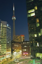 CN Tower Night Lights Toronto