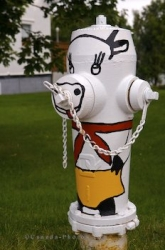 Cow Fire Hydrant Picture