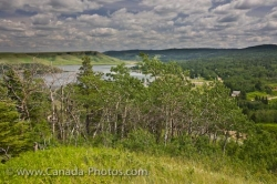 Elkwater Lake Hiking Scenery Cypress Hills Interprovincial Park