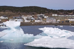 Fishing Town Pack Ice Newfoundland Canada