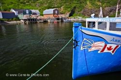 Fishing Village Harbour Trout River Newfoundland