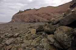 Fossil Cliffs Joggins Nova Scotia