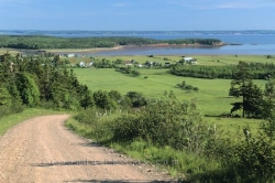 Fundy Bay Landscape Picture