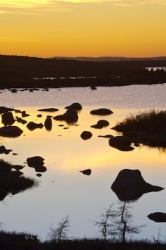 Golden Sunset Pond Labrador Coastal Drive Southern Labrador