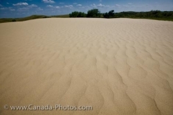 Great Sand Hills Patterns Sceptre Saskatchewan Canada