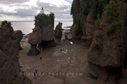 Hopewell Rocks Tourist Attraction Fundy Coastal Drive New Brunswick