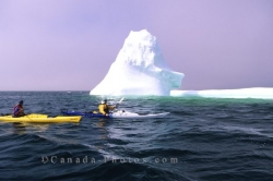 Iceberg Kayaking Adventure Trip