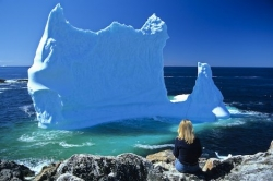 Iceberg Watching Tourist Newfoundland