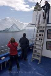 tourist Iceberg watching tours newfoundland