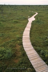 Kouchibouguac National Park Boardwalk New Brunswick
