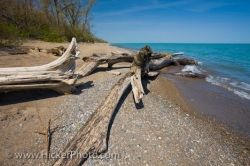 Lake Erie Beach Point Pelee National Park Leamington