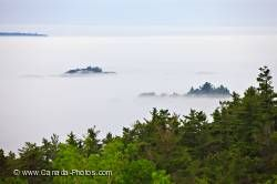 Fog Shrouded Lake Superior Forest Ontario