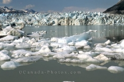 Lowell Lake Glacier Yukon