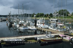Masset Queen Charlotte Islands