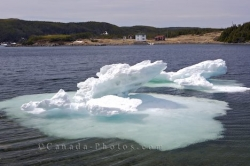 Melting Pack Ice St Lunaire Griquet Newfoundland