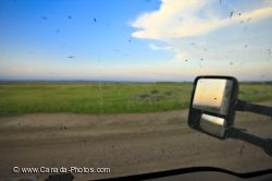 Mosquito Swarm Truck Window Frenchman River Valley Ecotour