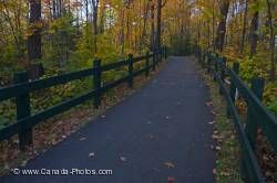 Paved Trail Fall Forest La Mauricie National Park