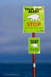 Polar Bear Sign Hudson Bay Manitoba