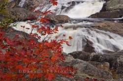 Red Autumn Leaves Sand River Waterfall Ontario