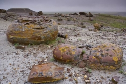 Red Rock Coulee Boulders Alberta