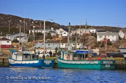 Saltwater Fishing Boats on Fishing Boats Sit In The Saltwater Of St  Anthony S Harbour In