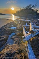 Scenic Pacific Rim National Park Coastline Sunset