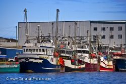 Shrimp Fishing Boats Newfoundland