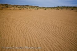 Spirit Sands Trail Sand Dune Patterns Manitoba Canada