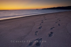 Sunset Beach Footprints Lake Superior Ontario
