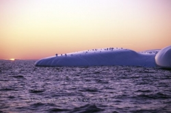 Sunsets Icebergs Pictures