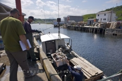 Trout River Fishermen Newfoundland