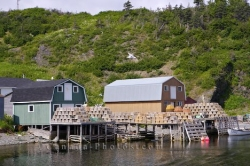 Trout River Fishing Stages Newfoundland