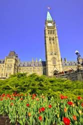 Parliament Buildings Tulip Garden Parliament Hill City of Ottawa