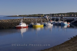 Westport Harbour Fishing Boats Brier Island Nova Scotia