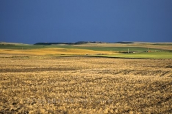 Wheat Country Saskatchewan
