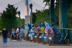 Winnipeg Wolves Historic Rail Bridge The Forks Manitoba