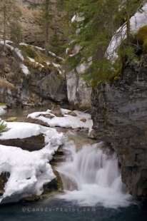 The water in Johnston Creek in Banff National Park, Alberta is extremely cold as the ice and snow begins to thaw.