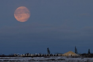 The full moon hangs over the landscape of Churchill, Manitoba and brightens up the area enough to capture a picture.