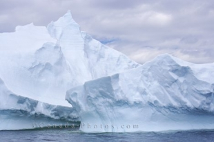 A picture of nature's creations are the massive icebergs seen in Iceberg Alley aboard an Iceberg Watching Tour that leaves from St. Anthony in Newfoundland, Canada.