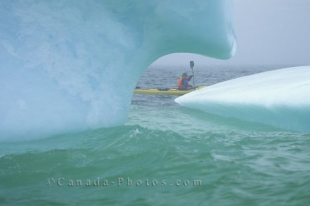Adventure Kayaking and watching icebergs, near St Anthony, Newfoundland, Canada, North America.