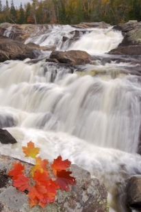 A scenic waterfall rushes over the rocks along the Sand River in Lake Superior Provincial Park in Ontario, Canada where Autumn leaves are displayed.