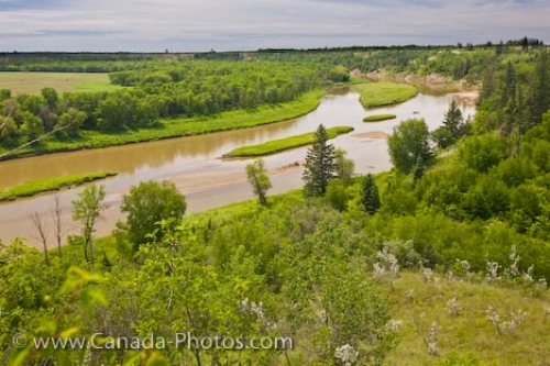 Photo: Assiniboine River Spirit Sands Spruce Woods Provincial Park