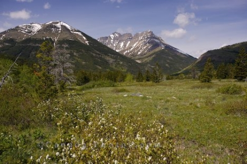 Photo: Blakiston Valley Southern Alberta