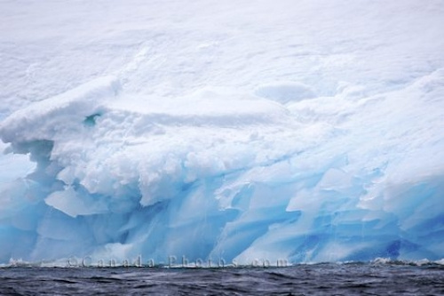 Photo: Blue Icebergs Iceberg Alley Newfoundland