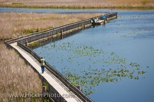 Photo: Boardwalk Visitors Point Pelee National Park Ontario Canada