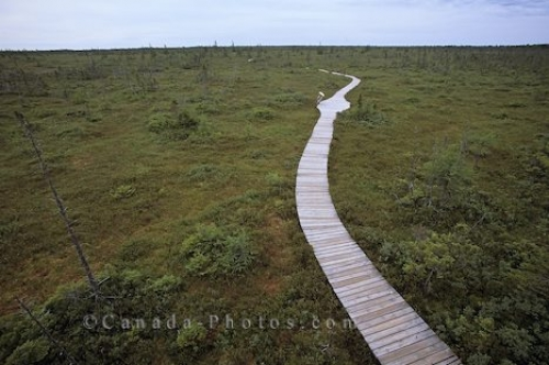 Photo: Boardwalk Kouchibouguac National Park