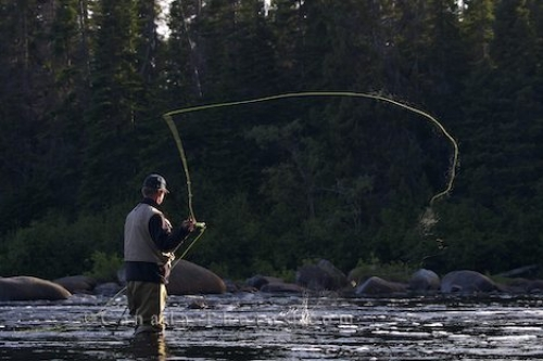 Photo: Casting Fly Fisherman Southern Labrador River