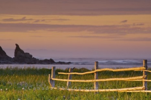 Photo: Newfoundland Labrador Coastal Sunset L Anse Aux Meadows