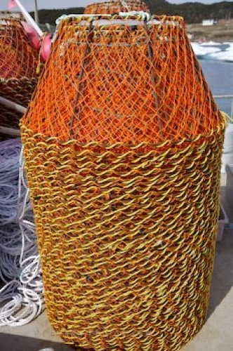 Photo: Commercial Fishing Crab Pots Conche Newfoundland